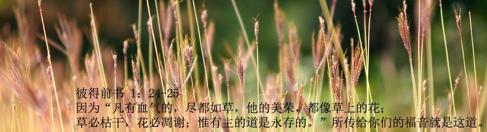 arec_slide_grass_text_JPEG